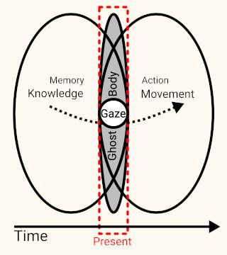 Diagram of a person
